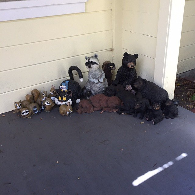 How many animals?  Spotted on Tuesday tour. 1633 Oakdale Ave - https://api.sftheo.com/listings/5a65523a-fc50-44b8-8def-b8ec3db537c2 #living415